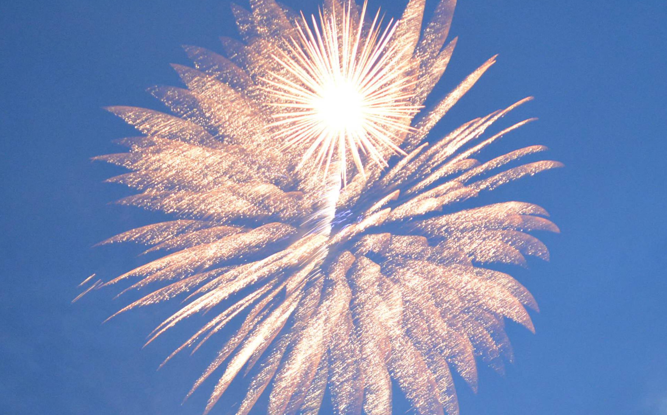 A Firework Solutions Limited display, with a gold firework on a blue sky